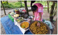 boiled peanuts : Sinhgad fort