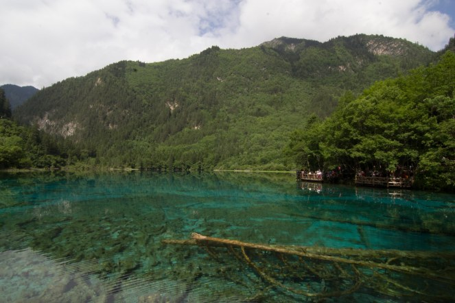 5 Flower lake , Jiuzhaigou